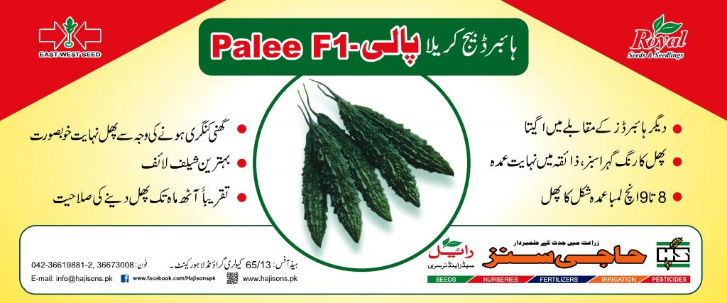 009 Palee Flex.fh4 FNF