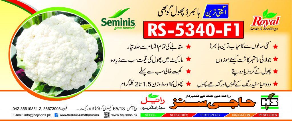 5340_Cauliflower_Flex Design3 FNF